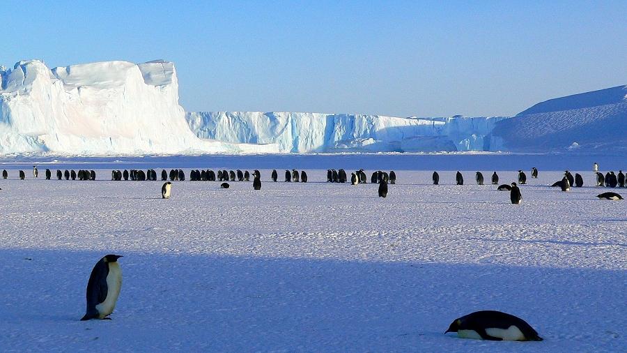 20-07-2018 06:00 Pierwsza ekspedycja badawcza odkrywa nieznany ekosystem Antarktydy
